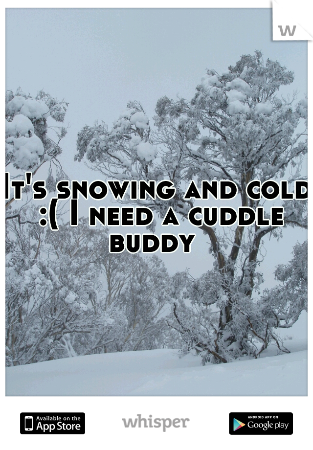 It's snowing and cold :( I need a cuddle buddy