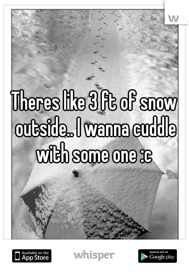 Theres like 3 ft of snow outside.. I wanna cuddle with some one :c
