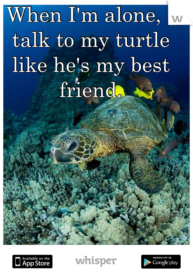 When I'm alone, I talk to my turtle like he's my best friend.