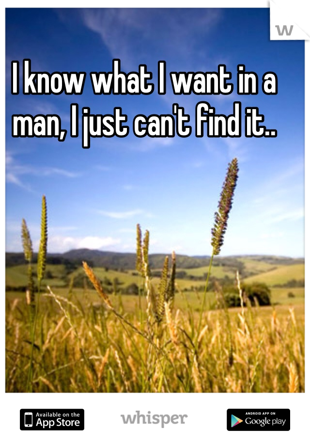 I know what I want in a man, I just can't find it..