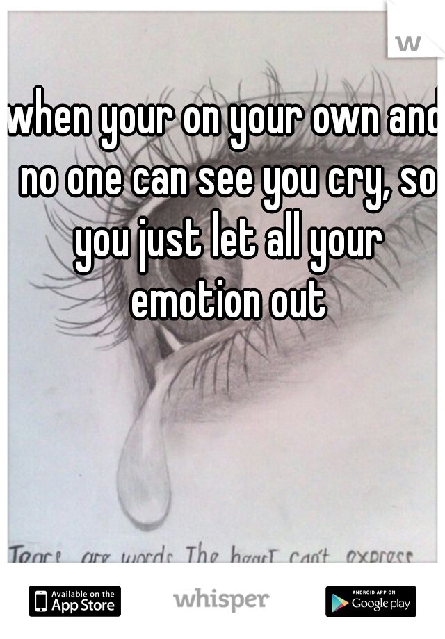when your on your own and no one can see you cry, so you just let all your emotion out