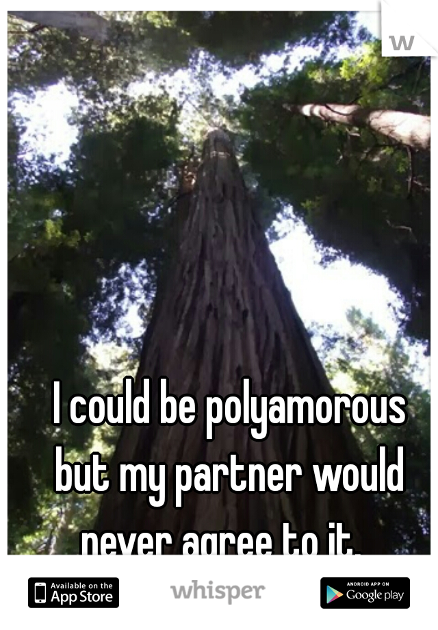 I could be polyamorous but my partner would never agree to it.