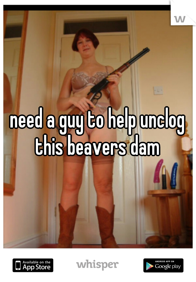 need a guy to help unclog this beavers dam