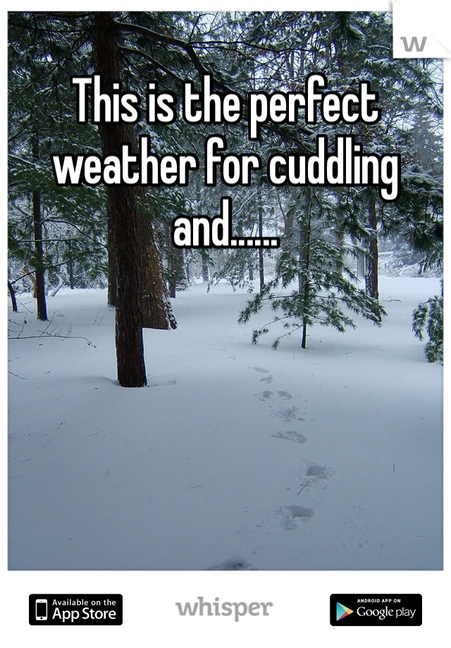 This is the perfect weather for cuddling and......