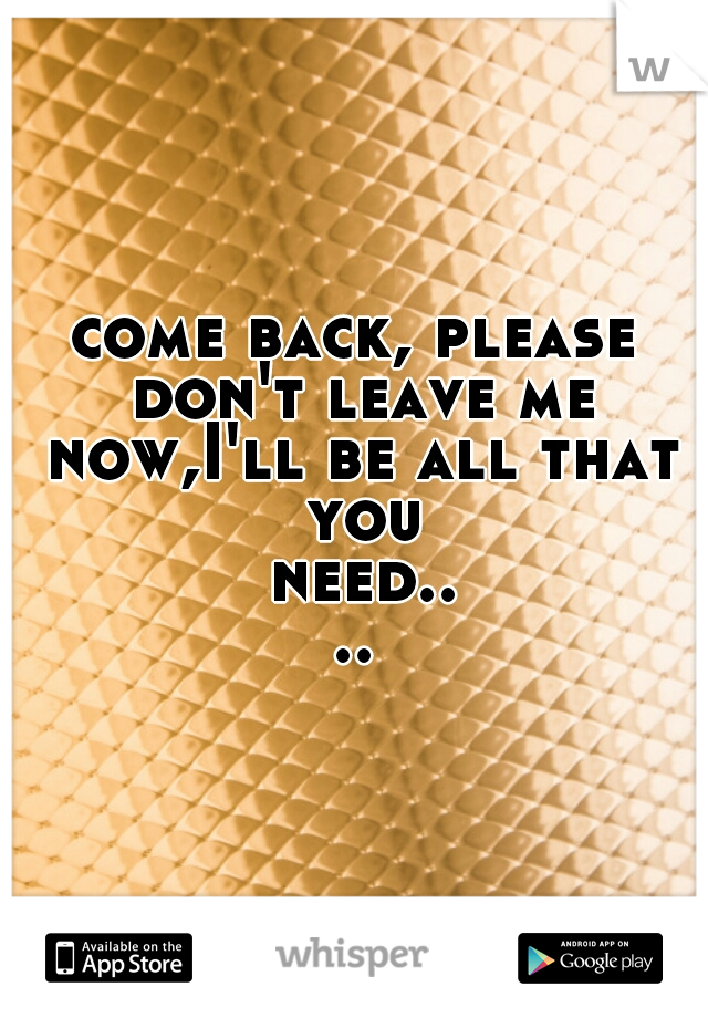come back, please don't leave me now,I'll be all that you need....