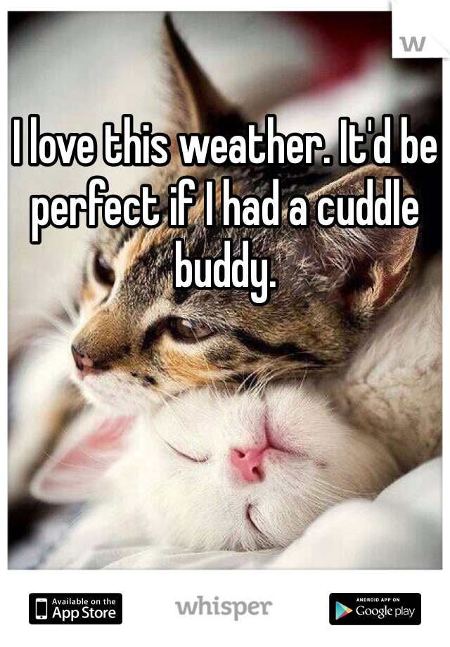 I love this weather. It'd be perfect if I had a cuddle buddy.