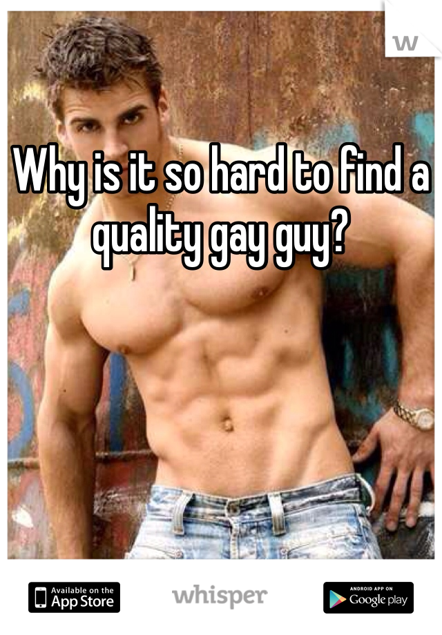 Why is it so hard to find a quality gay guy?