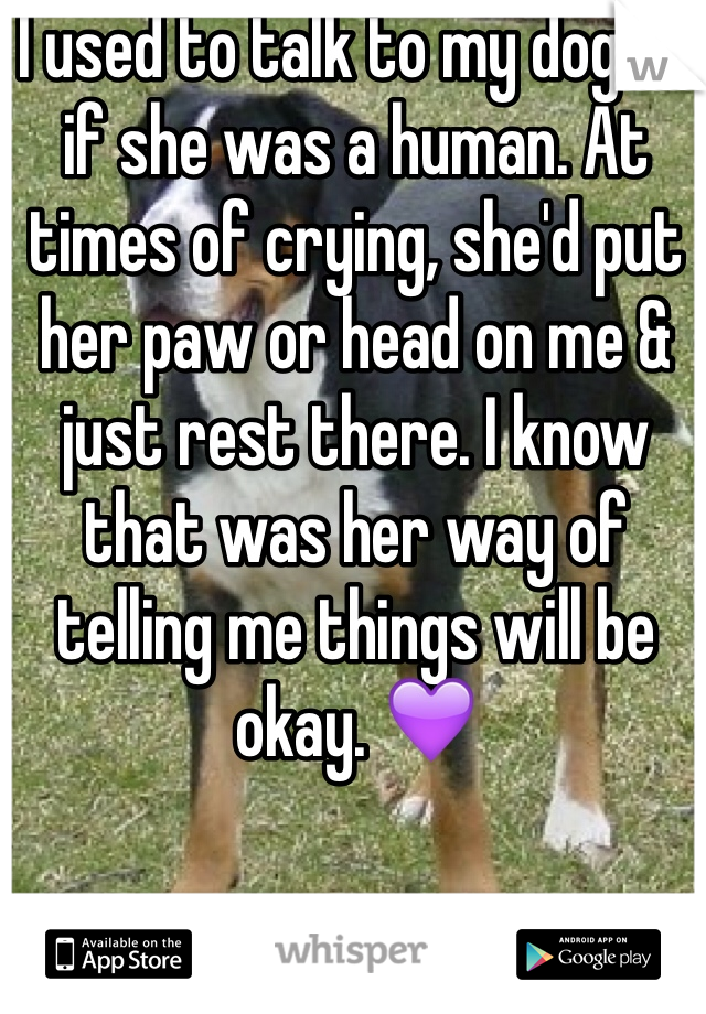 I used to talk to my dog as if she was a human. At times of crying, she'd put her paw or head on me & just rest there. I know that was her way of telling me things will be okay. 💜