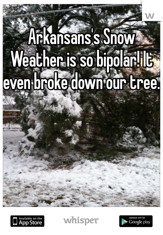 Arkansans's Snow Weather is so bipolar! It even broke down our tree.