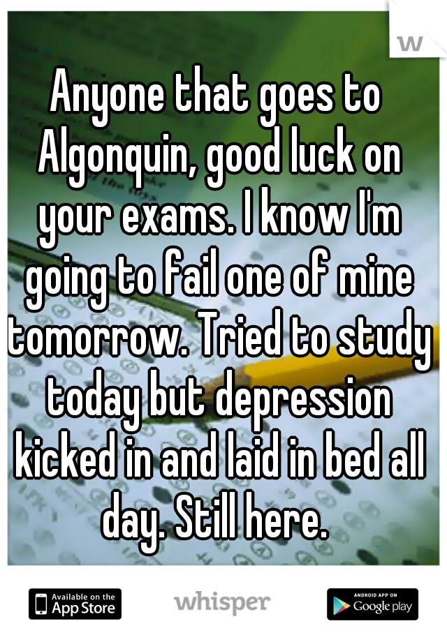 Anyone that goes to Algonquin, good luck on your exams. I know I'm going to fail one of mine tomorrow. Tried to study today but depression kicked in and laid in bed all day. Still here.