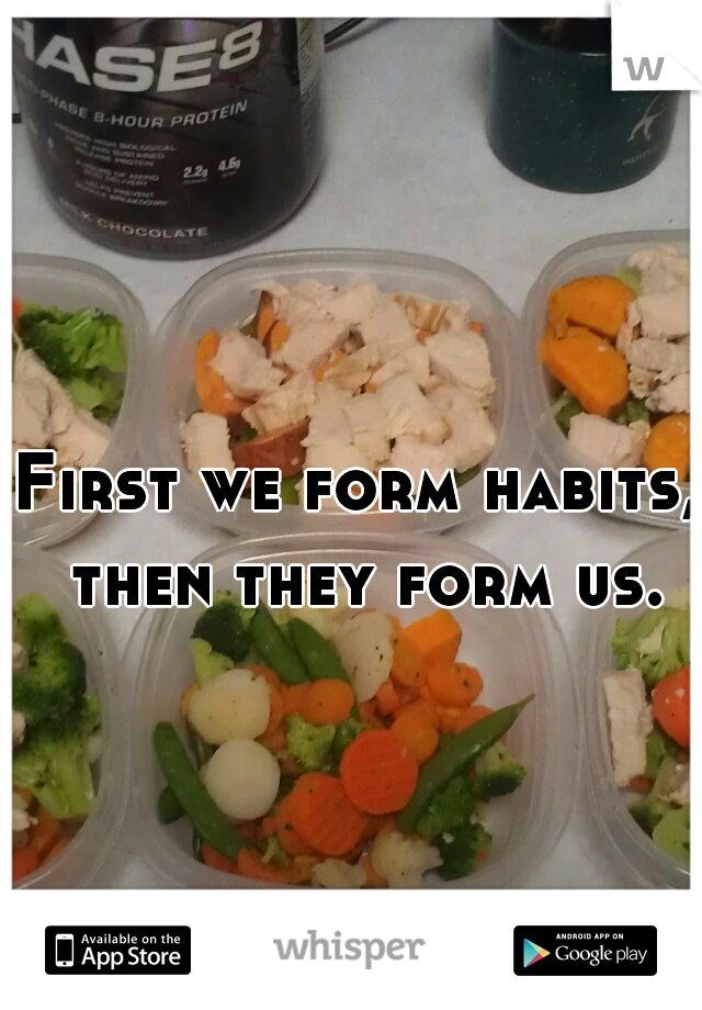 First we form habits, then they form us.