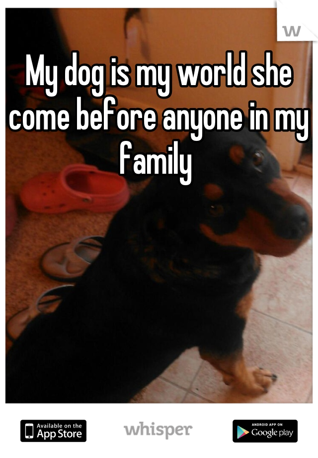 My dog is my world she come before anyone in my family