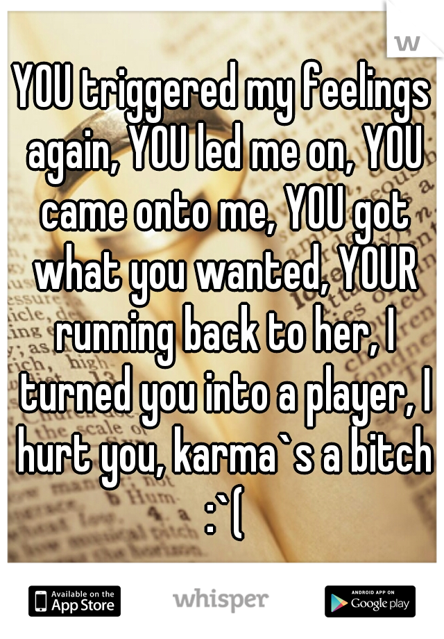 YOU triggered my feelings again, YOU led me on, YOU came onto me, YOU got what you wanted, YOUR running back to her, I turned you into a player, I hurt you, karma`s a bitch :`(