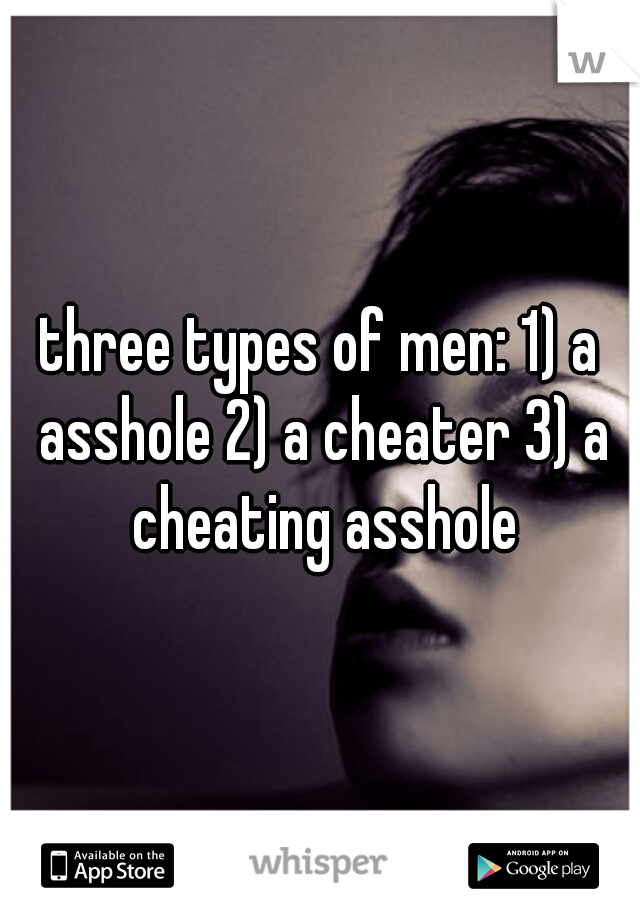 three types of men: 1) a asshole 2) a cheater 3) a cheating asshole