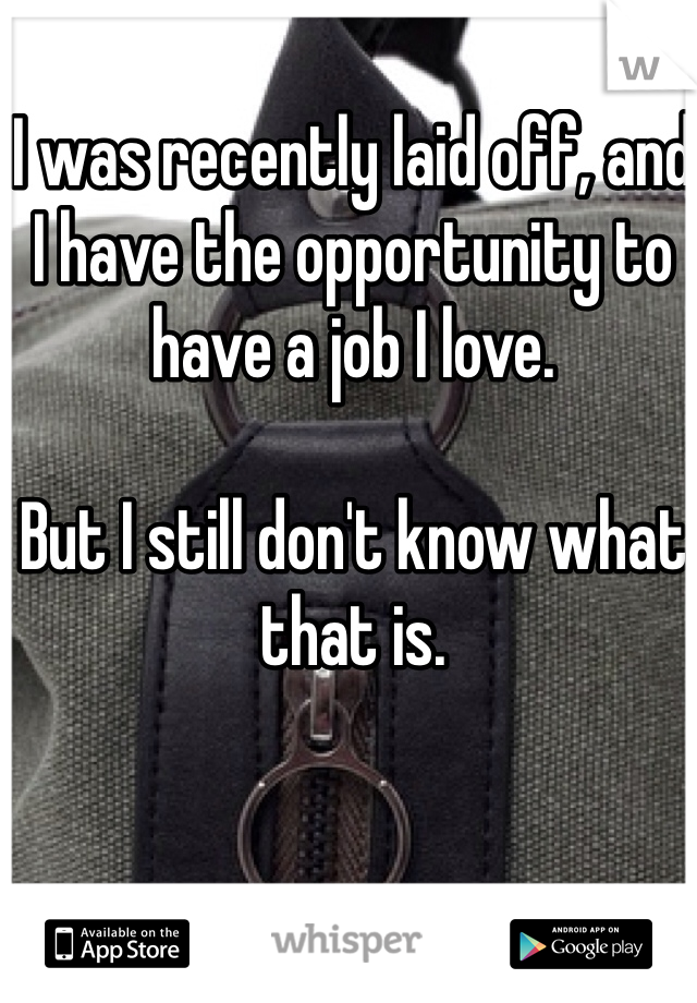 I was recently laid off, and I have the opportunity to have a job I love.   But I still don't know what that is.