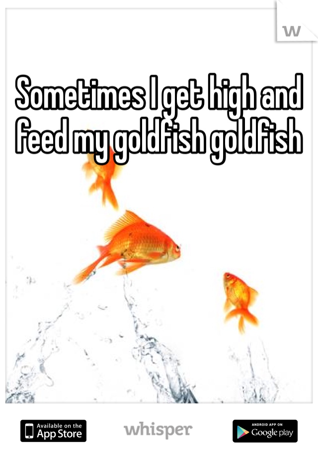 Sometimes I get high and feed my goldfish goldfish