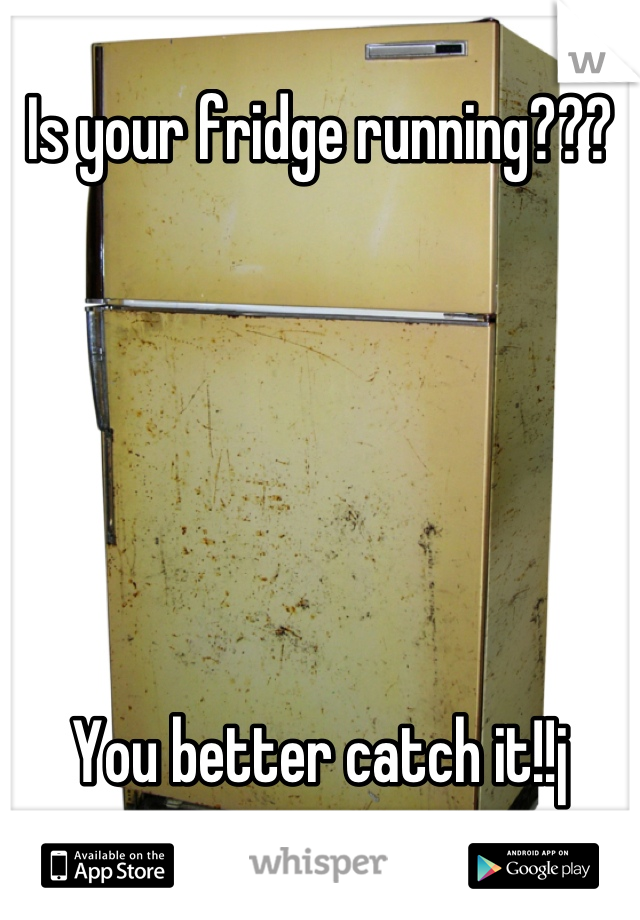 Is your fridge running???       You better catch it!!j