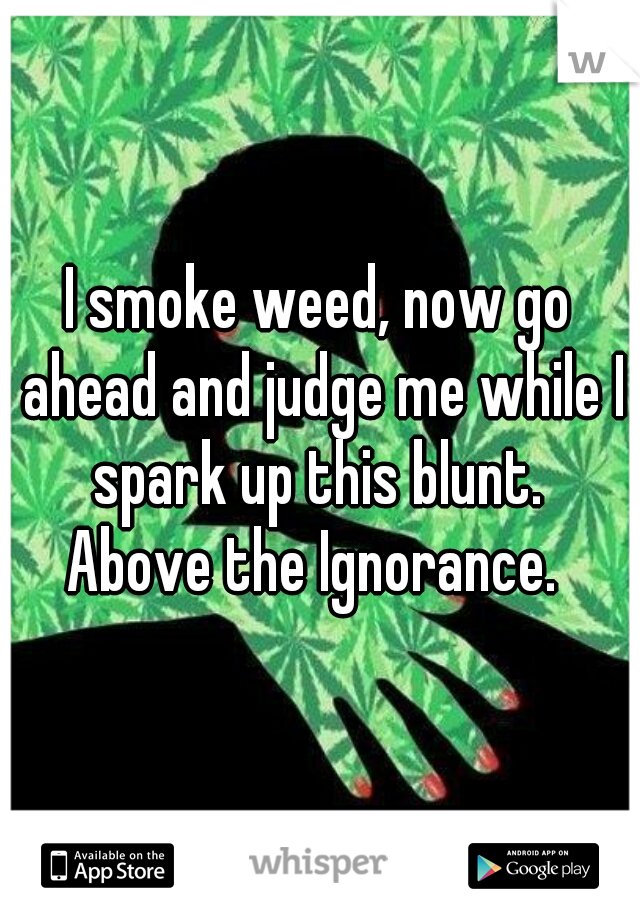 I smoke weed, now go ahead and judge me while I spark up this blunt.  Above the Ignorance.