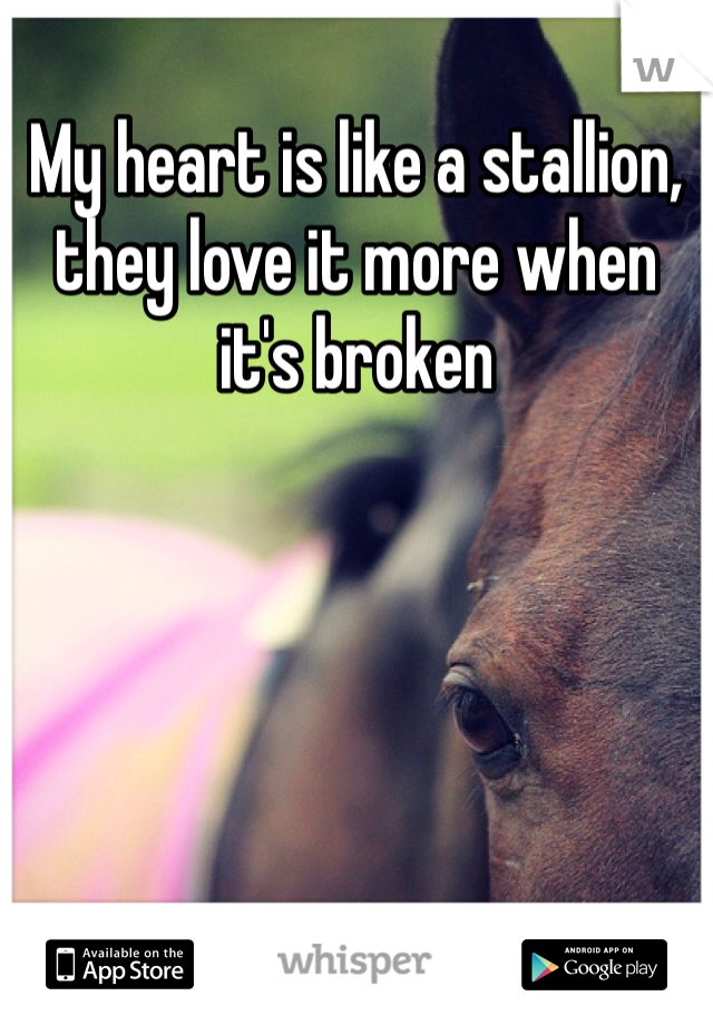 My heart is like a stallion, they love it more when it's broken