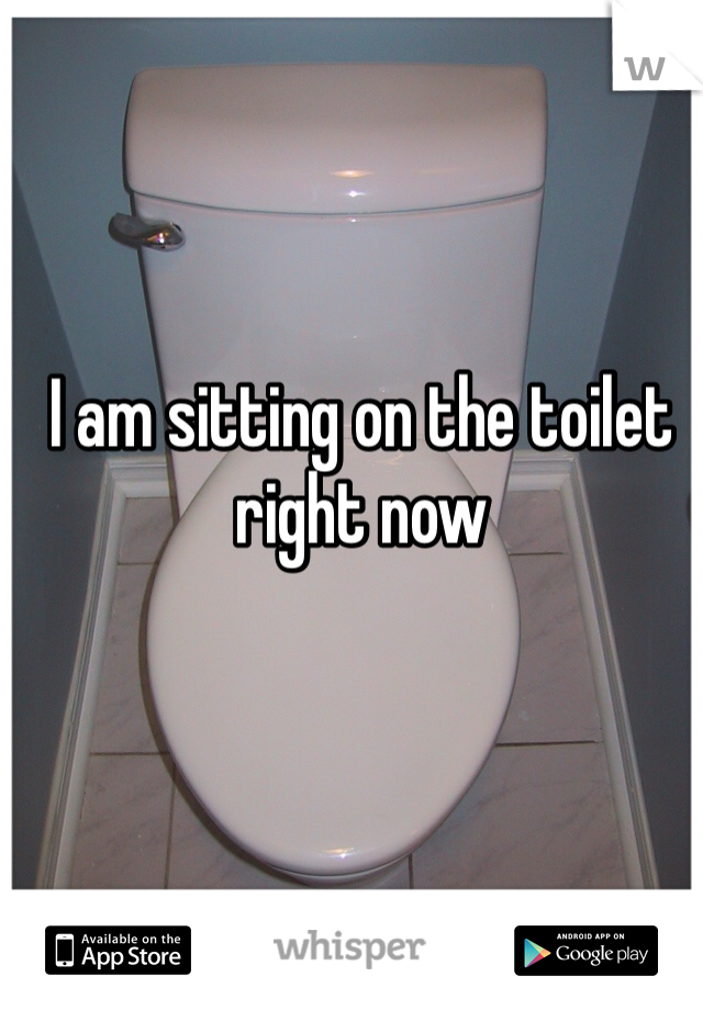 I am sitting on the toilet right now