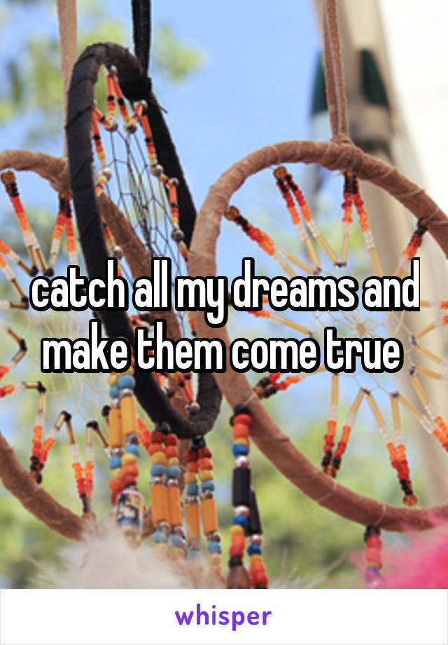 catch all my dreams and make them come true