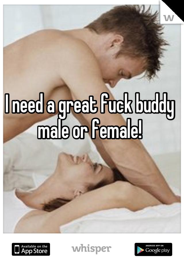 I need a great fuck buddy male or female!
