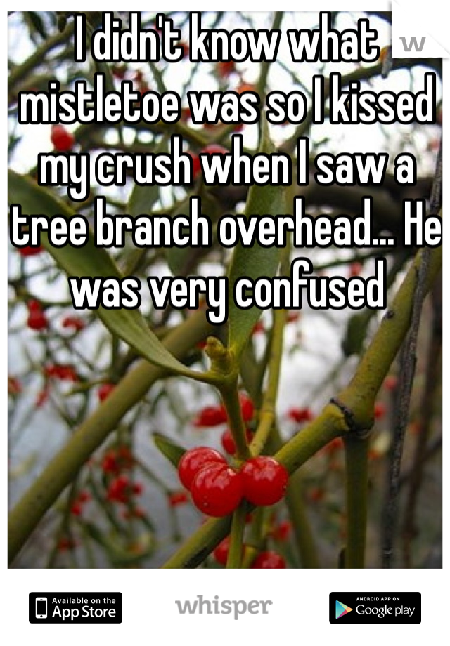 I didn't know what mistletoe was so I kissed my crush when I saw a tree branch overhead... He was very confused