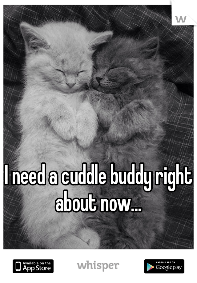 I need a cuddle buddy right about now...