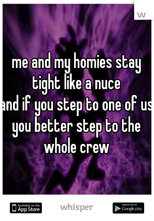 me and my homies stay tight like a nuce  and if you step to one of us  you better step to the whole crew