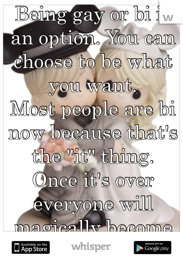 """Being gay or bi is an option. You can choose to be what you want. Most people are bi now because that's the """"it"""" thing. Once it's over everyone will magically become straight again."""