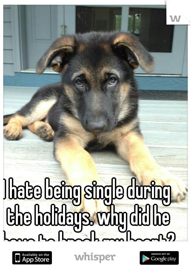 I hate being single during the holidays. why did he have to break my heart?