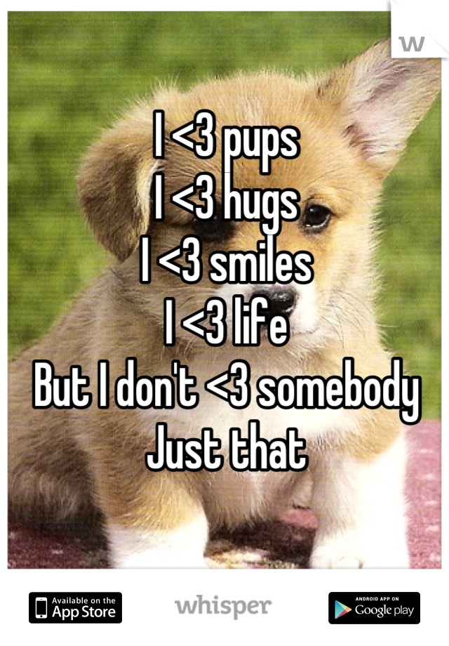 I <3 pups I <3 hugs I <3 smiles I <3 life But I don't <3 somebody Just that