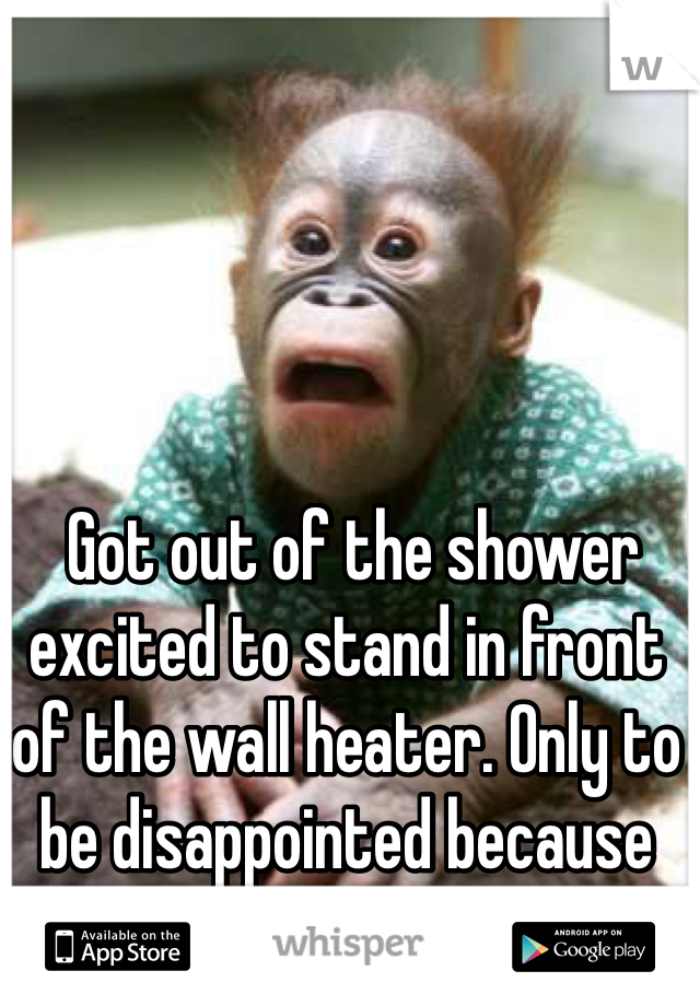 Got out of the shower excited to stand in front of the wall heater. Only to be disappointed because it's off