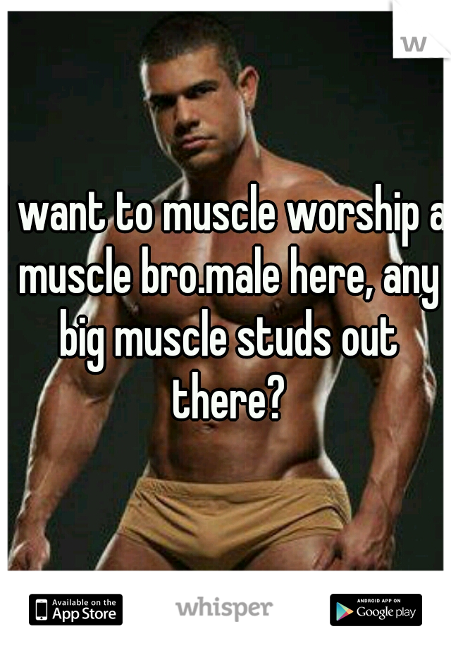 I want to muscle worship a muscle bro.male here, any big muscle studs out there?