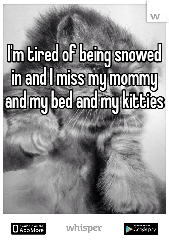 I'm tired of being snowed in and I miss my mommy and my bed and my kitties