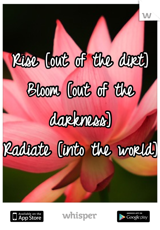 Rise [out of the dirt] Bloom [out of the darkness] Radiate [into the world]
