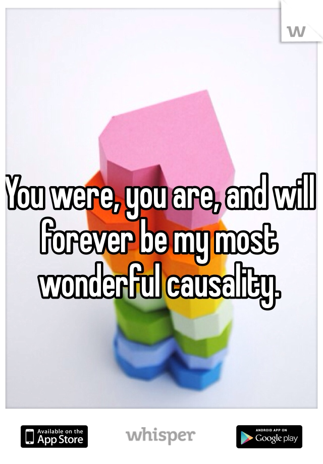 You were, you are, and will forever be my most wonderful causality.