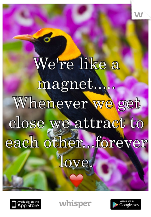 We're like a magnet..... Whenever we get close we attract to each other...forever love. ❤️