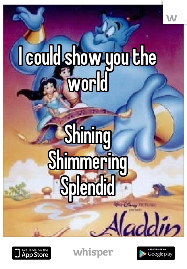 I could show you the world  Shining  Shimmering Splendid