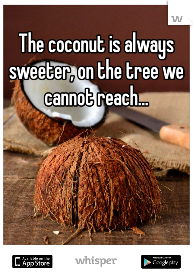 The coconut is always sweeter, on the tree we cannot reach...