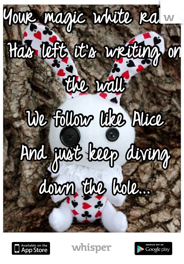 Your magic white rabbit Has left it's writing on the wall We follow like Alice And just keep diving down the hole...
