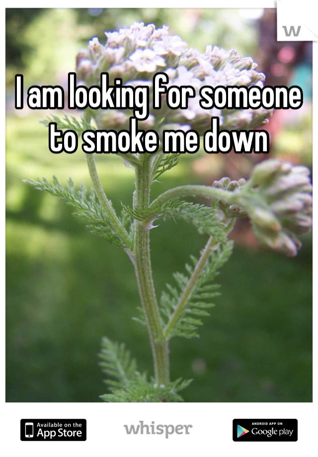 I am looking for someone to smoke me down