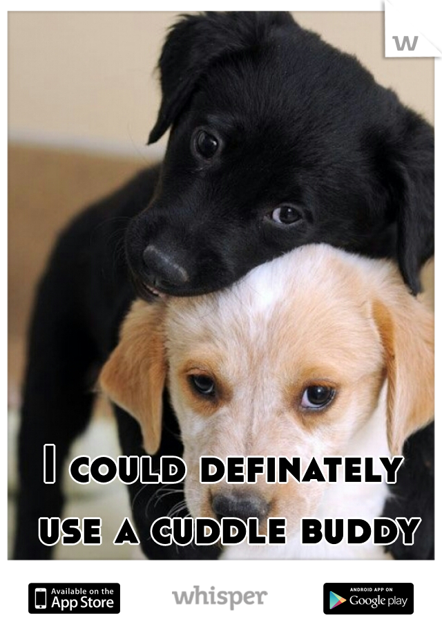 I could definately use a cuddle buddy tonight.