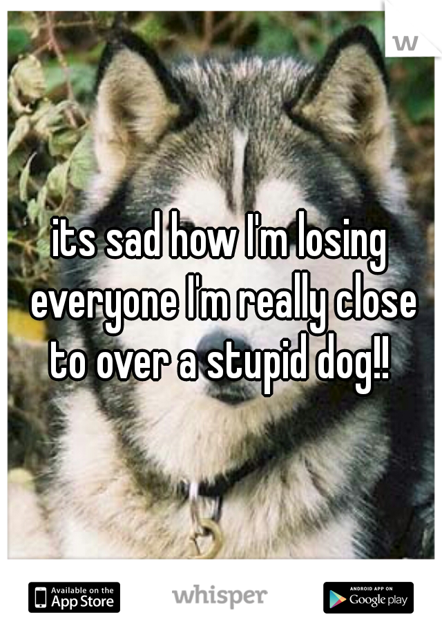 its sad how I'm losing everyone I'm really close to over a stupid dog!!