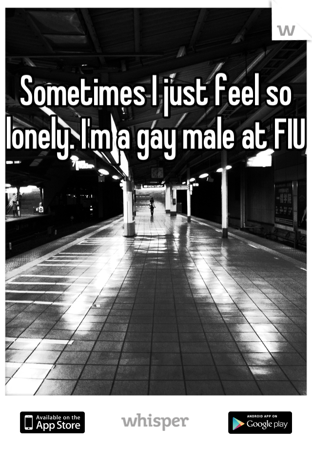 Sometimes I just feel so lonely. I'm a gay male at FIU