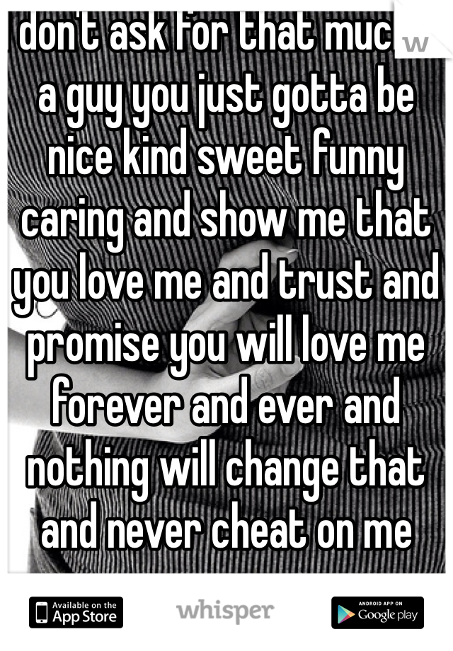 I don't ask for that much in a guy you just gotta be nice kind sweet funny caring and show me that you love me and trust and promise you will love me forever and ever and nothing will change that and never cheat on me