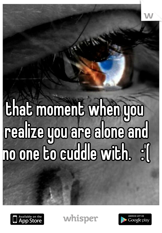 that moment when you realize you are alone and no one to cuddle with.   :'(
