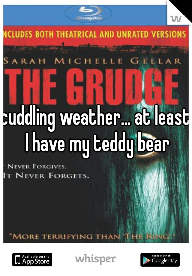 cuddling weather... at least I have my teddy bear
