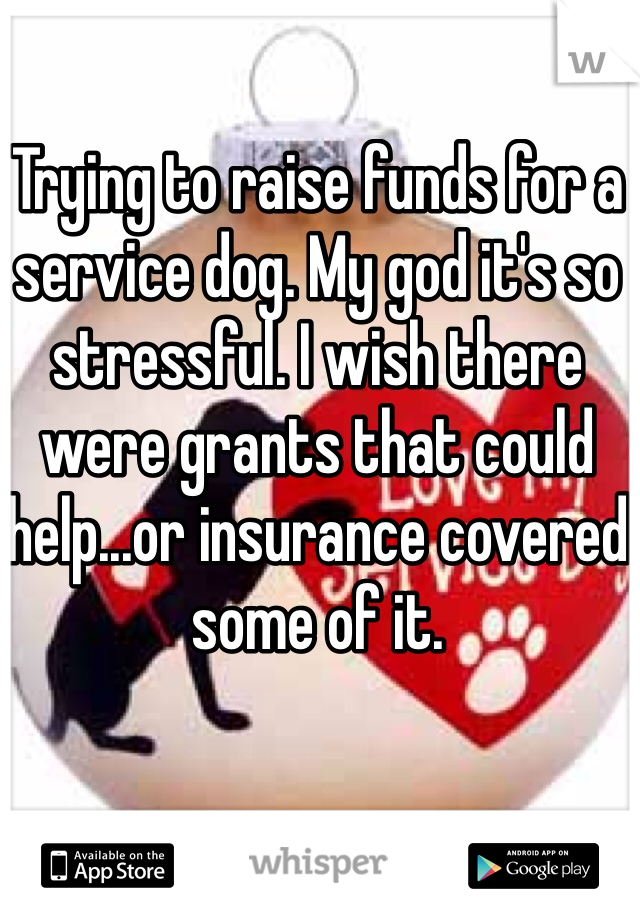 Trying to raise funds for a service dog. My god it's so stressful. I wish there were grants that could help...or insurance covered some of it.