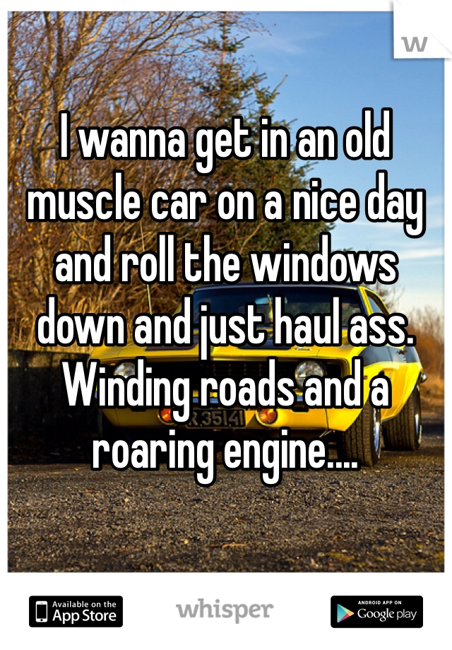 I wanna get in an old muscle car on a nice day and roll the windows down and just haul ass. Winding roads and a roaring engine....